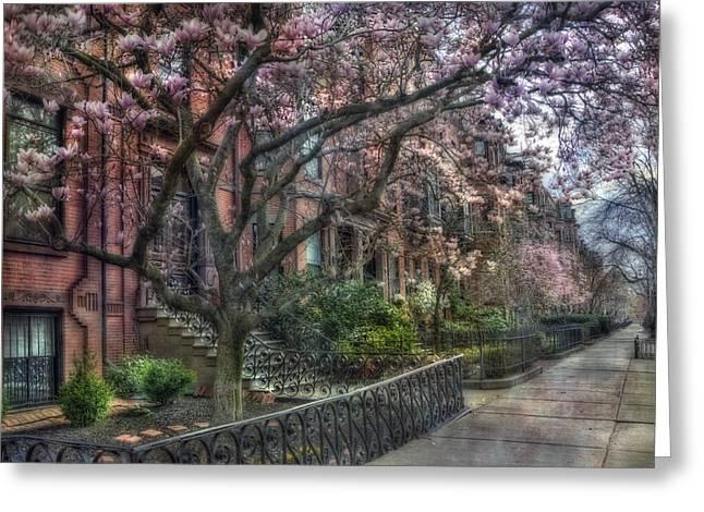 Spring Scenes Greeting Cards - Spring in Boston - Back Bay 2 Greeting Card by Joann Vitali