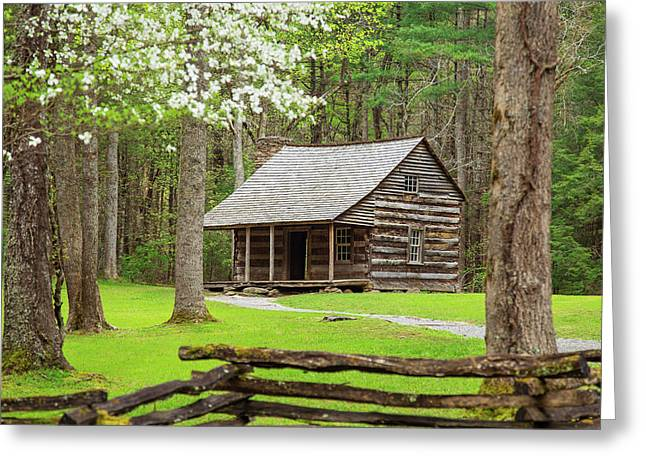 Spring In Cades Cove Greeting Card by Jackie Novak