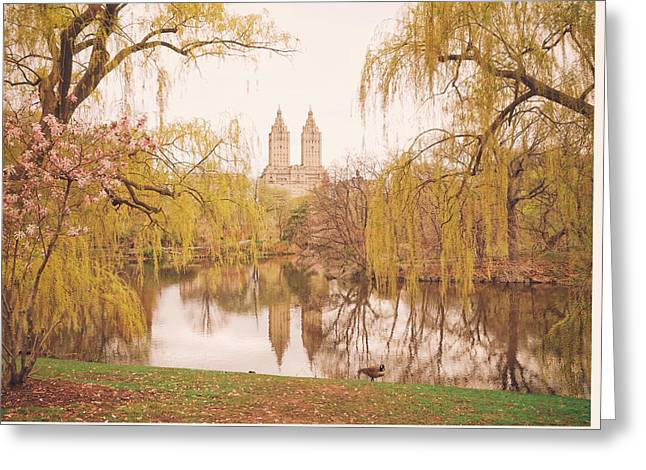 New York Photo Greeting Cards - Spring in Central Park Greeting Card by Vivienne Gucwa