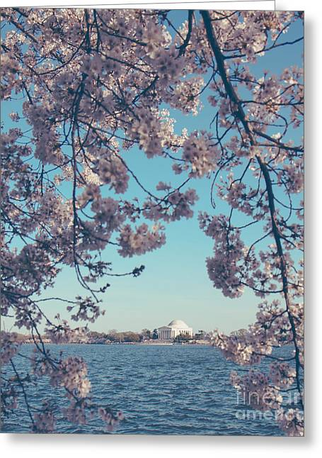 Soft Light Greeting Cards - Spring in DC Portrait Greeting Card by Emily Kay