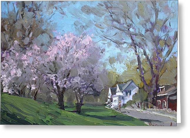 Ontario Paintings Greeting Cards - Spring in J C Saddington Park Greeting Card by Ylli Haruni