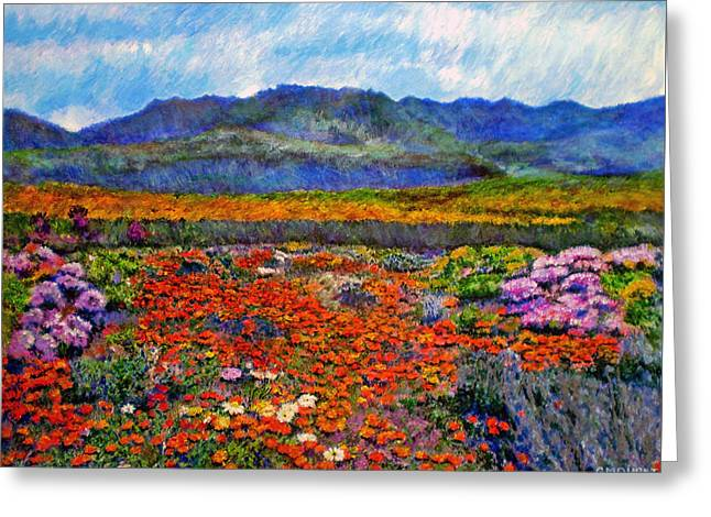 Spring In Namaqualand Greeting Card by Michael Durst