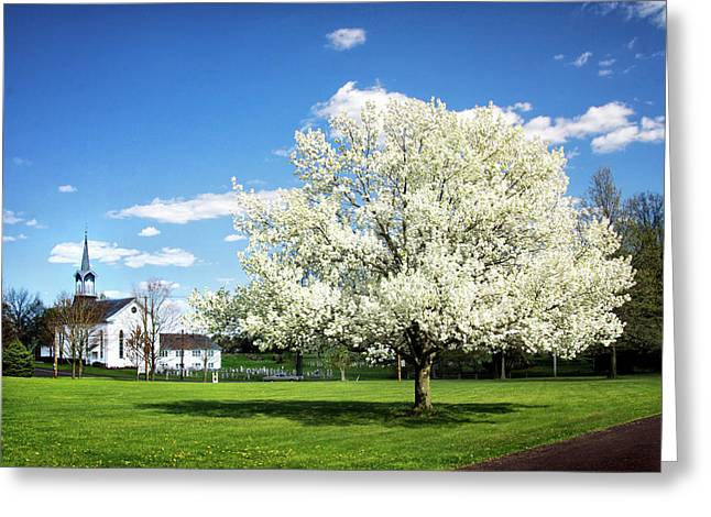 Zion Lutheran Church Greeting Cards - Spring in the Country Greeting Card by Carolyn Derstine