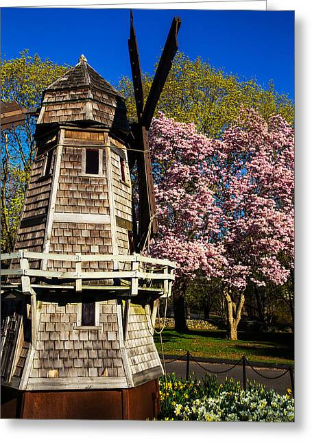 Windmill And Tree Greeting Cards - Spring Is Here Greeting Card by Karol  Livote