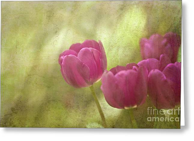 Spring Bulbs Digital Greeting Cards - Spring is in the Air Greeting Card by Reflective Moment Photography And Digital Art Images