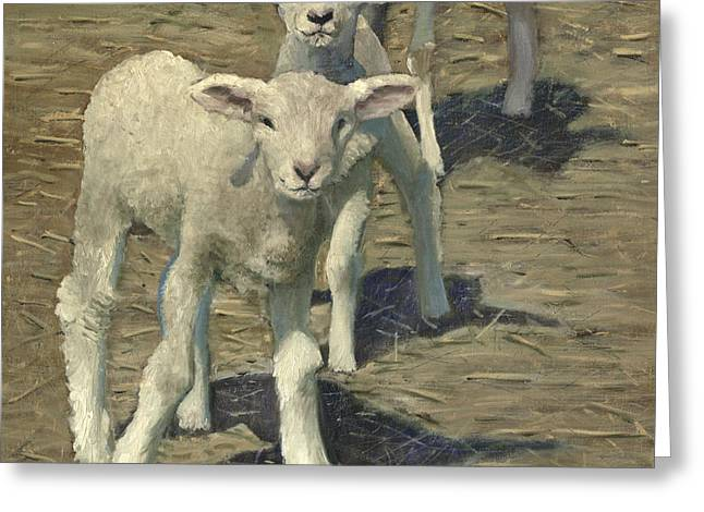 Barn Yard Greeting Cards - Spring Lambs Brothers Greeting Card by John  Reynolds