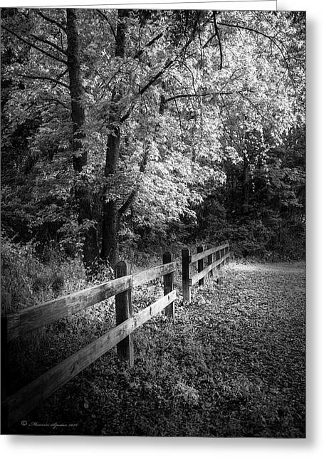 Spring Leaves B/w Greeting Card by Marvin Spates