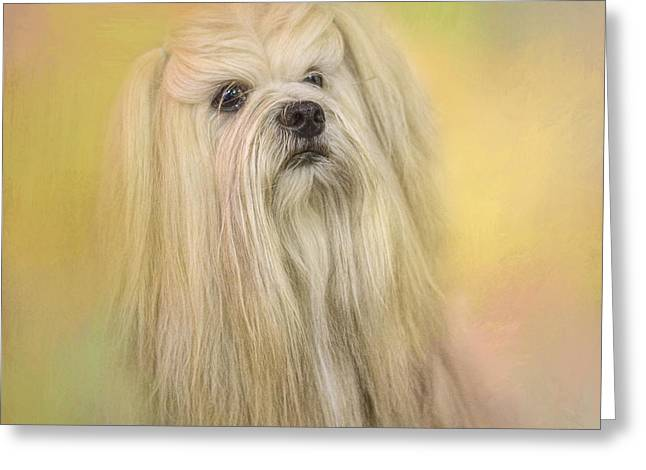 Artistic Photography Greeting Cards - Spring Lhasa Apso Greeting Card by Jai Johnson