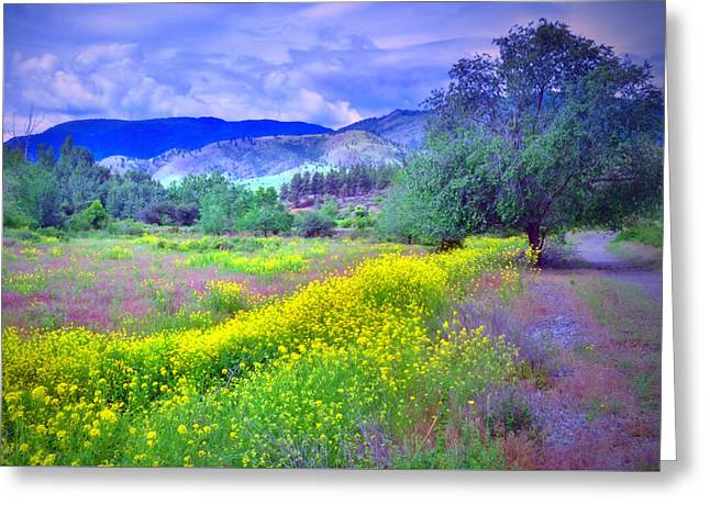 Okanagan Greeting Cards - Spring Morning Along the Channel Parkway Greeting Card by Tara Turner