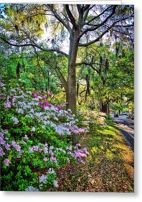 Juliette Low Greeting Cards - Spring Morning Greeting Card by Diana Powell