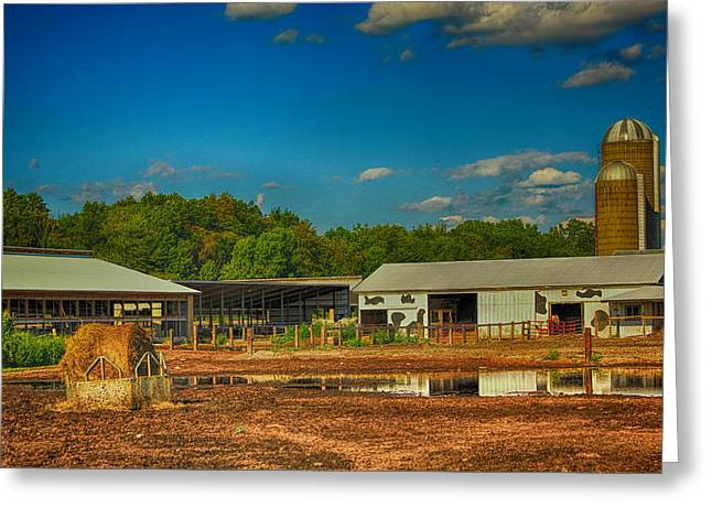 Outbuildings Greeting Cards - Spring on the Farm Greeting Card by Pat Cook