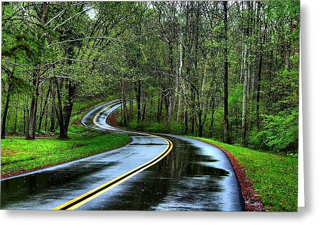 Spring On The Natchez Trace Greeting Card by Julie Riker Dant