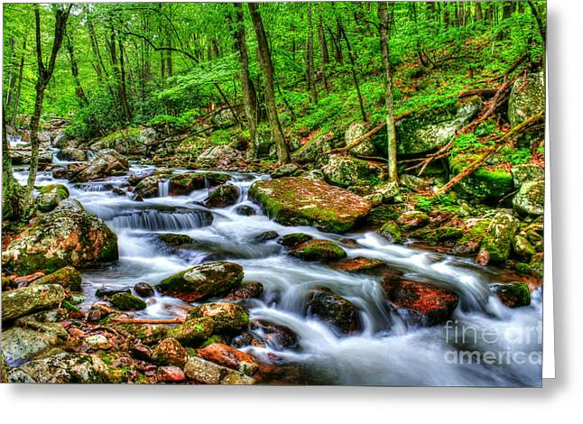 Peaceful Scene Greeting Cards - Spring on the Rocks Greeting Card by Darren Fisher