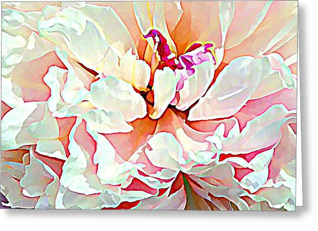 Spring Peony Greeting Card by Mindy Newman
