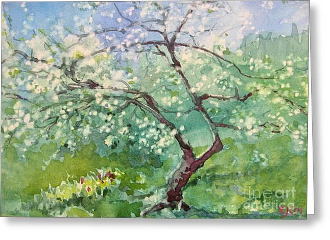 Spring Plum Greeting Card by Elizabeth Carr