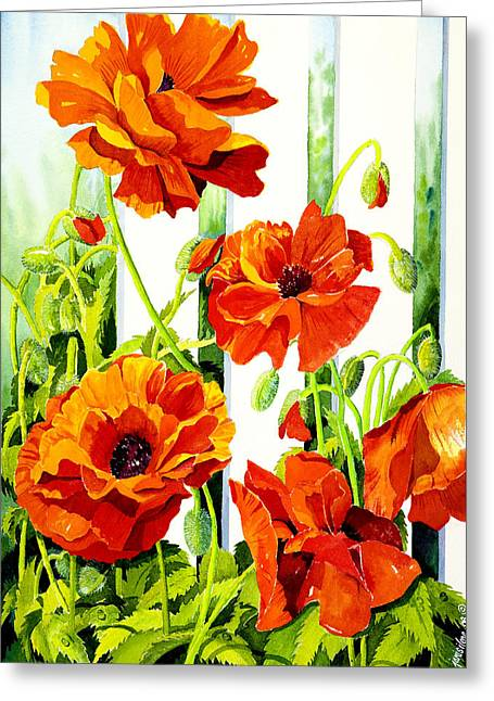Botanical Greeting Cards - Spring Poppies Greeting Card by Janis Grau