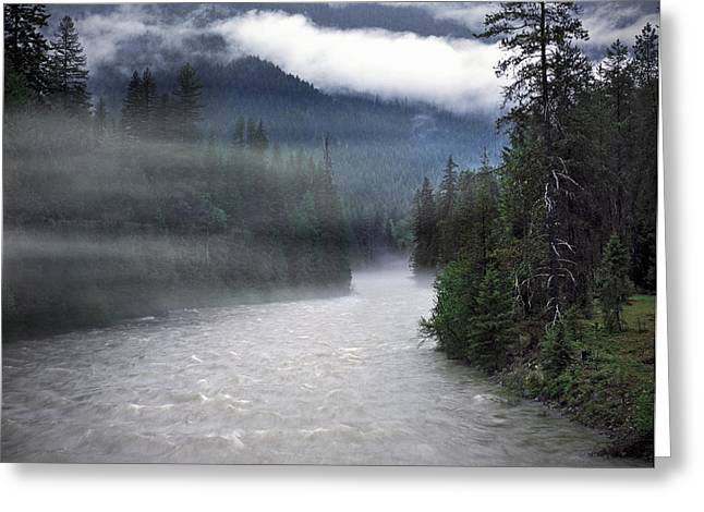 Boundary Waters Greeting Cards - Spring Rain Greeting Card by Leland D Howard