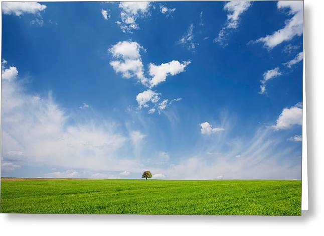 Minimal Landscape Greeting Cards - Spring Scape Greeting Card by Evgeni Dinev