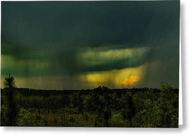 Spring Tapestries - Textiles Greeting Cards - Spring Showers Greeting Card by James Hennis