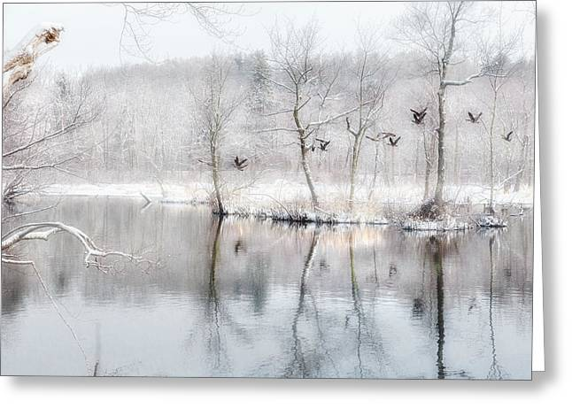 Fog Greeting Cards - Spring Snow Greeting Card by Bill Wakeley