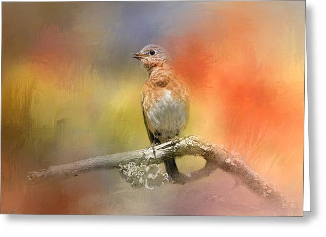 Birds On A Branch Greeting Cards - Spring Song Greeting Card by Jai Johnson