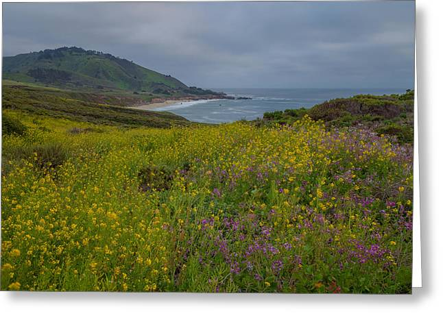 Big Sur Beach Greeting Cards - Spring Storm Greeting Card by Jonathan Nguyen