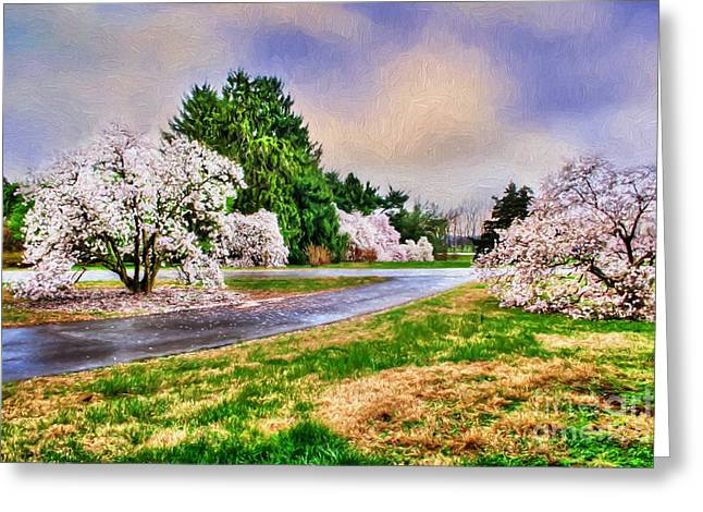 Magnoliaceae Greeting Cards - Spring Storms Greeting Card by Darren Fisher