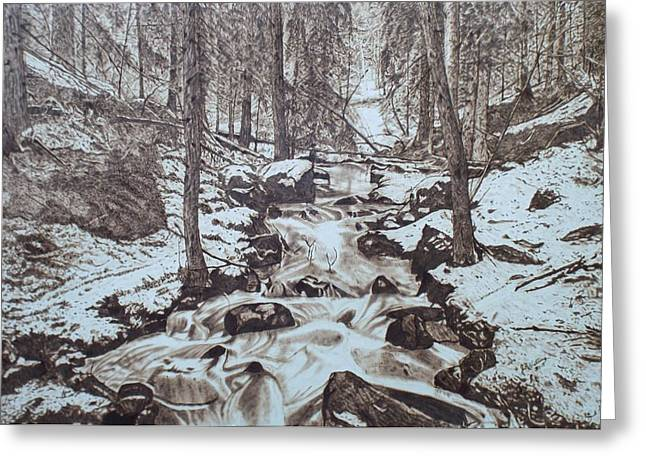 Rapid Pyrography Greeting Cards - Spring Thaw Greeting Card by Jim Nutting