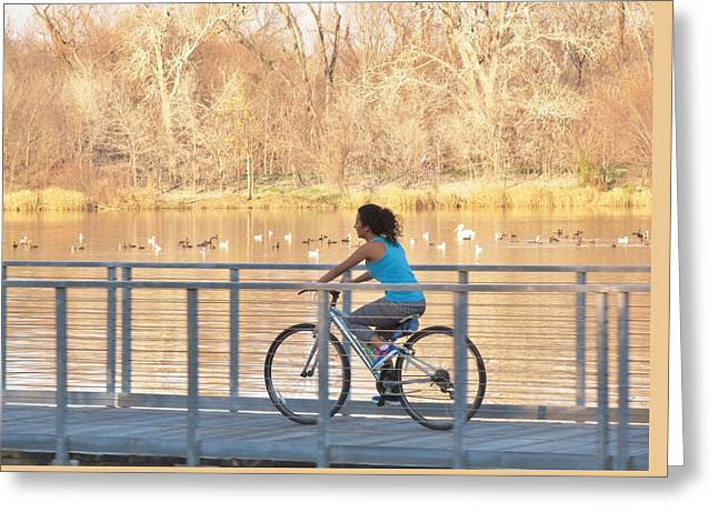 Bridge Over A Lake Greeting Cards - Spring Time In The Park Greeting Card by Donna Wilson
