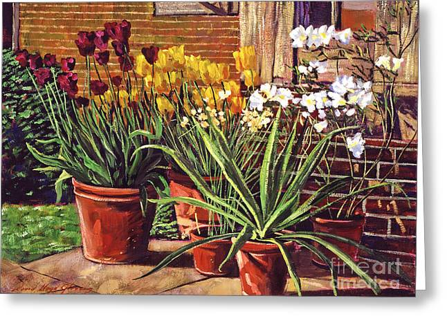 Patio Greeting Cards - Spring Tulips and White Azaleas Greeting Card by David Lloyd Glover