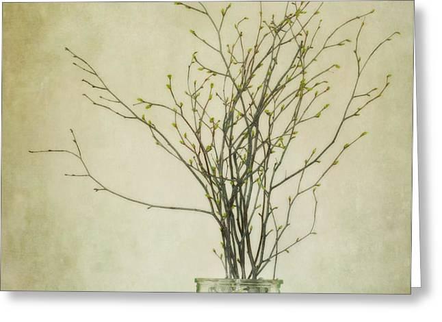 spring unfolds Greeting Card by Priska Wettstein