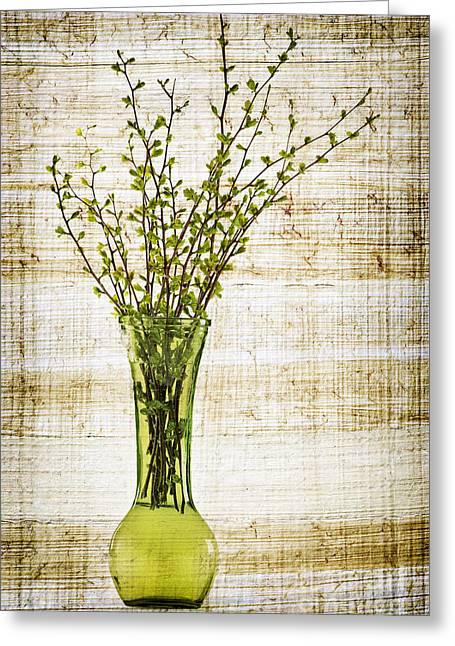 Organic Photographs Greeting Cards - Spring Vase Greeting Card by Elena Elisseeva
