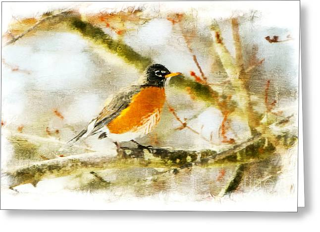 Print Photographs Greeting Cards - Spring Visitor Greeting Card by Tina  LeCour