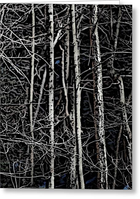 Ladnscape Greeting Cards - Spring Woods Simulated Woodcut Greeting Card by David Lane