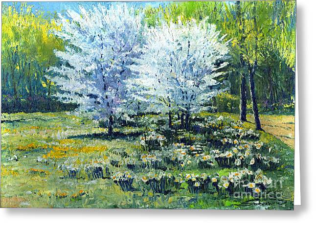 Baden-baden Greeting Cards - Spring Greeting Card by Yuriy  Shevchuk