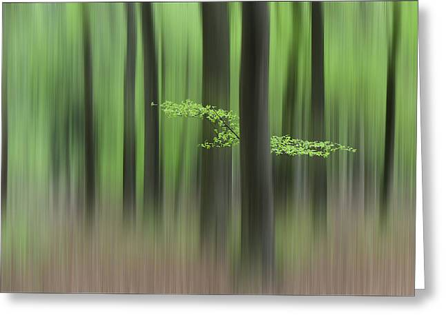 Mood Greeting Cards - Springmorning Greeting Card by Huib Limberg
