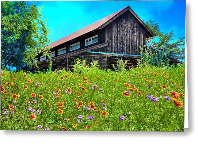 Outbuildings Greeting Cards - Springs Blessings Greeting Card by Lynn Bauer