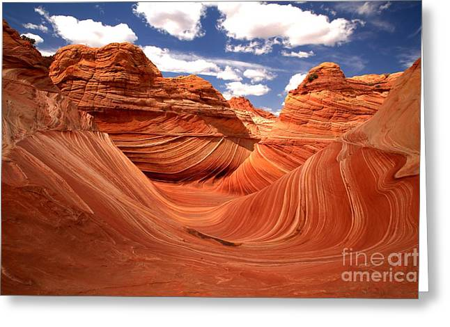 The Plateaus Greeting Cards - Springtime At The Wave Greeting Card by Adam Jewell