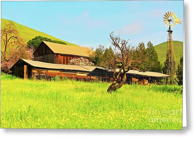 Weathervane Greeting Cards - Springtime Barn San Francisco Bay Greeting Card by Gus McCrea