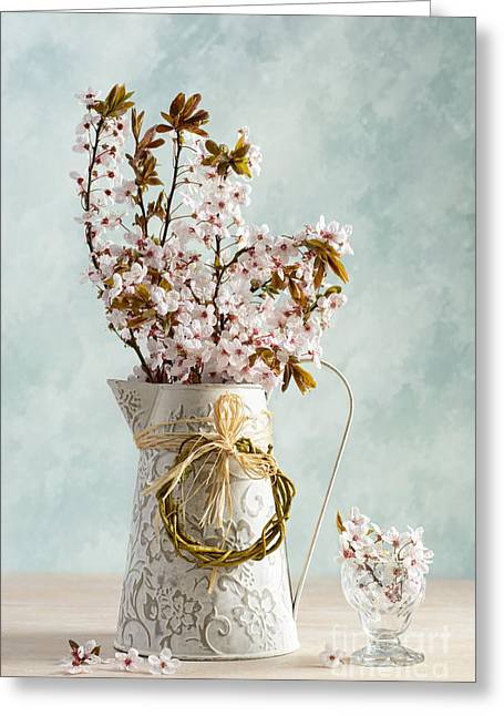 Interior Still Life Photographs Greeting Cards - Springtime Blossom Greeting Card by Amanda And Christopher Elwell