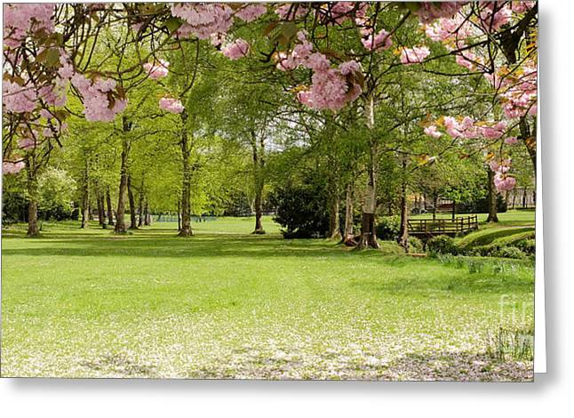 Quaker Greeting Cards - Springtime Bournville Park Greeting Card by John Chatterley