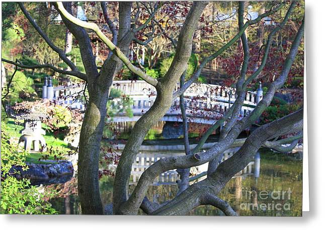 Springtime Bridge Through Japanese Maple Tree Greeting Card by Carol Groenen