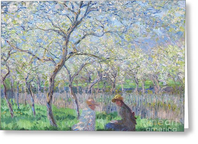 Orchard Greeting Cards - Springtime Greeting Card by Claude Monet
