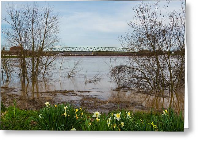 River Flooding Greeting Cards - Springtime Flooding Greeting Card by Jan Holden