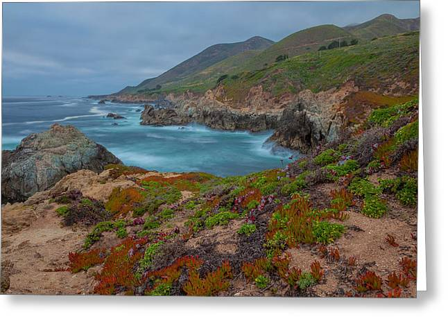 Big Sur Beach Greeting Cards - Springtime In Big Sur Greeting Card by Jonathan Nguyen