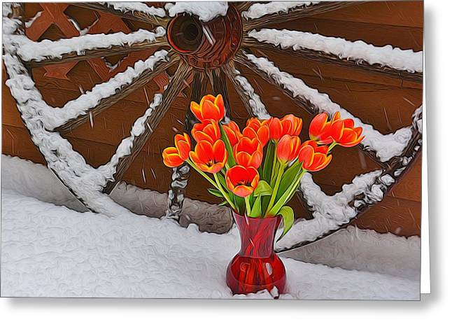 Spring Bulbs Greeting Cards - Springtime in Colorado Greeting Card by Diane Alexander