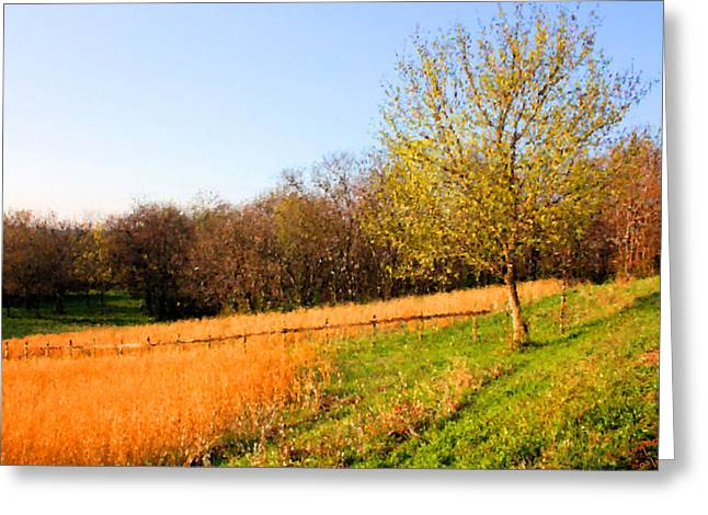 Tennessee Farm Digital Greeting Cards - Springtime in Tennessee Greeting Card by Kristin Elmquist