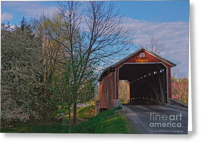 Roadway Greeting Cards - Springtime in the Country Greeting Card by Mike Griffiths