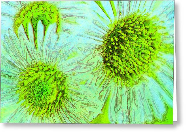 Enhanced Greeting Cards - Springtime Greeting Card by Mother Nature