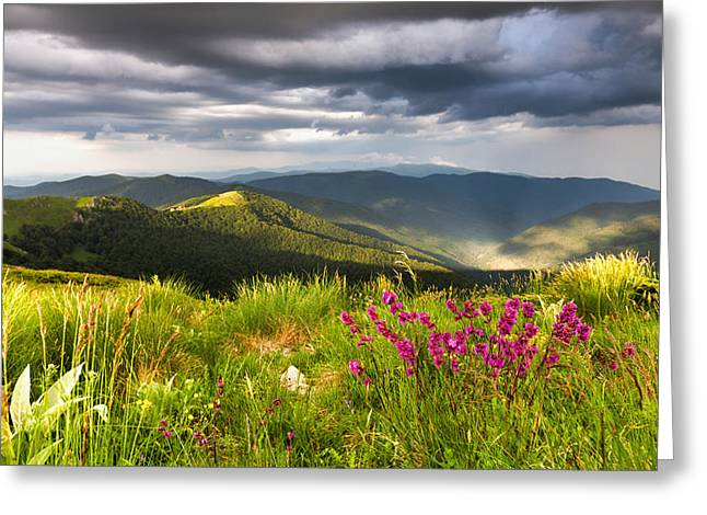Balkan Greeting Cards - Springtime Mountain Greeting Card by Evgeni Dinev